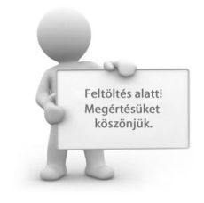 Szilágyi György: Dzsingisz Kohn Córeszban (könyv és hangoskönyv)