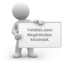 Felszeghy Csaba: Szilágyi Györggyel az óriáskerék tetején