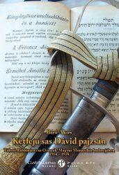 Bíró Ákos: Kétfejű sas Dávid pajzsán